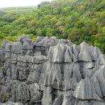 Tsingy grigi dell'Ankarana