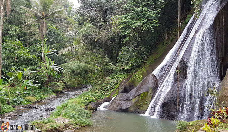 Cascate - Campuhan - Bali