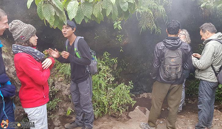 Fumarole sul Mont Batur