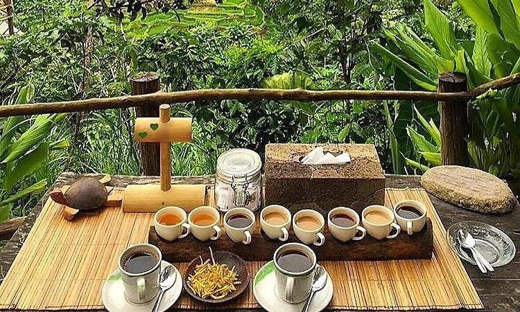 bali degustazione caffè