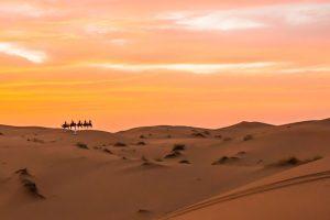 Marocco - Tour locations Il Gladiatore
