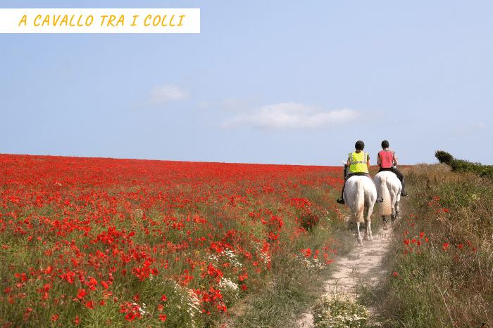 vacanza sport toscana (2)