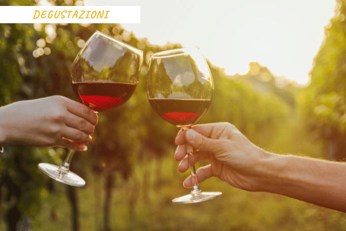 vacanze toscana vino (7)